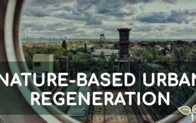 Online-Kurs Nature-based Urban Regeneration